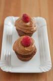 Chocolate Cupcake with raspberries. Home made Chocolate Cupcake with raspberries Royalty Free Stock Photo