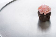 Chocolate Cupcake on Silver Tray Stock Image