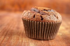 Chocolate cupcake. Single home baked chocolate cupcake on wooden surface Stock Image
