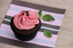 Chocolate Cupcake with Swirly Strawberry Buttercream Royalty Free Stock Photo