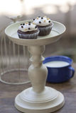 Chocolate Cupcake with two tone mini ball. Two Chocolate Cupcake with two tone mini ball royalty free stock photos