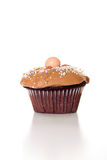 Chocolate cupcake on white vertical. Shot of a chocolate cupcake on white vertical Stock Images