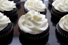 Chocolate cupcakes. Rows of fresh baked chocolate cupcakes with white vanilla swirled frosting Stock Images