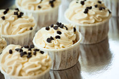 Chocolate cupcakes. Closeup of cream and chocolate cupcakes royalty free stock images