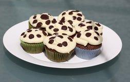 Free Chocolate Cupcakes Royalty Free Stock Photo - 24587925