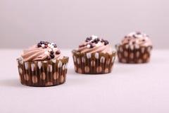 Chocolate cupcakes Royalty Free Stock Photos