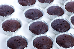 Chocolate cupcakes Stock Photos