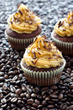 Chocolate cupcakes  with caramel cream on coffee beans sample te. Muffins decorated with peanut cream and chocolate Stock Photos