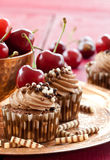Chocolate cupcakes with cherries Stock Photography