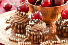 Chocolate cupcakes with cherries Stock Photos