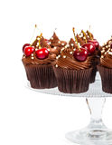 Chocolate cupcakes with cherry Royalty Free Stock Photos