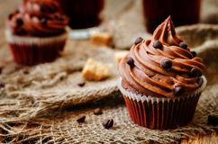 Chocolate cupcakes with chocolate frosting and chocolate chips Stock Image