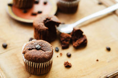 Chocolate cupcakes with coffee beans Royalty Free Stock Image