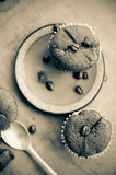 Chocolate cupcakes with coffee beans Royalty Free Stock Photo