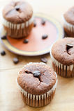 Chocolate cupcakes with coffee beans Royalty Free Stock Images