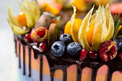 Chocolate cupcakes with colored layers, decorated with fruit, be Stock Photo