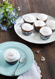 Chocolate cupcakes with cream  frosting Royalty Free Stock Images
