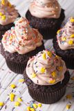 Chocolate cupcakes decorated with delicate cream close-up. verti Stock Photos