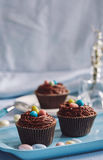 Chocolate cupcakes decorated with skittles. Palatable chocolate cupcakes decorated with skittles served on the blue tray Stock Images