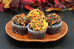 Chocolate cupcakes decorated with sprinkles for autumn. Stock Photography