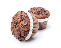 Chocolate cupcakes isolated Stock Image