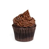 Chocolate Cupcakes Stock Images