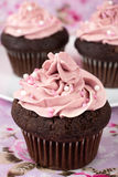 Chocolate cupcakes with pink buttercream Royalty Free Stock Image