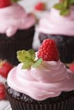 Chocolate cupcakes with pink cream and raspberry macro. Vertical. A delicious chocolate cupcakes with pink cream and raspberry macro. Vertical Stock Photos