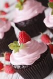 Chocolate cupcakes with pink cream and raspberry macro. Vertical. A delicious chocolate cupcakes with pink cream and raspberry macro. Vertical Royalty Free Stock Image