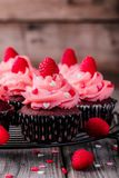 Chocolate cupcakes with pink cream, sugar hearts and fresh raspberries for  Valentine Day. Chocolate cupcakes with pink cream, sugar hearts and fresh raspberries Stock Photography