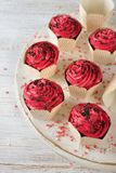 Chocolate cupcakes with pink icing royalty free stock image
