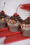 Chocolate Cupcakes. Some party time chocolate cupcakes Stock Photography