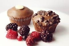Chocolate cupcakes sprinkles royalty free stock image