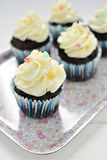 Chocolate cupcakes on tray. Chocolate cupcakes with white frosting on flowery tray Royalty Free Stock Photos