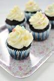 Chocolate cupcakes on tray Royalty Free Stock Photos