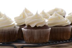 Chocolate cupcakes with vanilla frosting on a white background Royalty Free Stock Photo