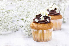 Chocolate cupcakes for wedding party royalty free stock photo