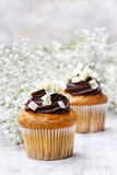 Chocolate cupcakes for wedding party Stock Photo