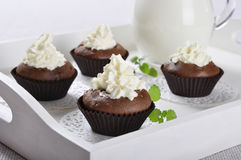 Chocolate cupcakes with whipped cream Royalty Free Stock Images