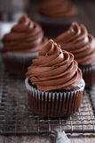 Chocolate cupcakes with whipped ganache Royalty Free Stock Image
