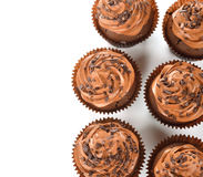 Chocolate cupcakes. On a white background stock images