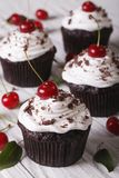 Chocolate cupcakes with white cream and cherry, vertical Royalty Free Stock Photos