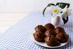 Plate of chocolate cupcakes and white flowers, copy space Stock Photos