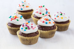 Chocolate cupcakes  with  white icing Royalty Free Stock Photo