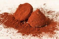 Chocolate da trufa Imagem de Stock
