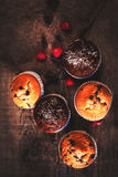 Chocolate dark muffins on wooden background with powdered sugar Royalty Free Stock Image