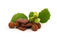 Chocolate de la avellana Imagen de archivo libre de regalías