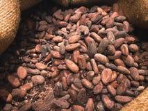 Chocolate de las semillas en un saco fotografía de archivo