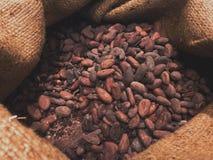 Chocolate de las semillas en un saco Imagenes de archivo