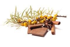 Chocolate de Masala chai com especiarias e anis de estrela, vara de canela, grãos de pimenta, no saco e no fundo de madeira Foto de Stock Royalty Free